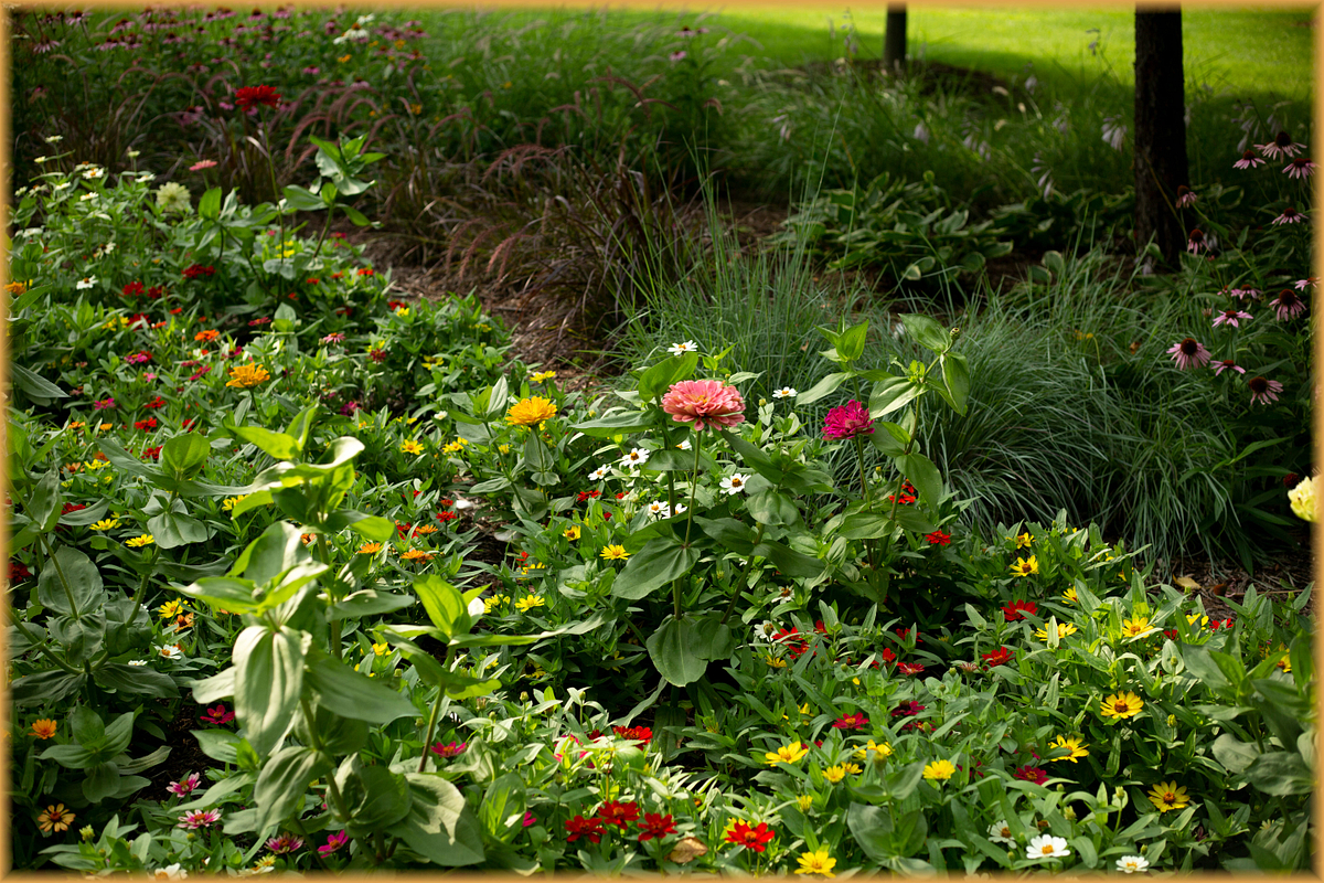 Mabery Gelvin Botanical Gardens