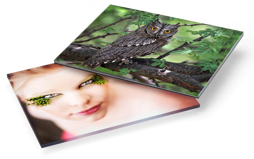 Acrylic Print Examples