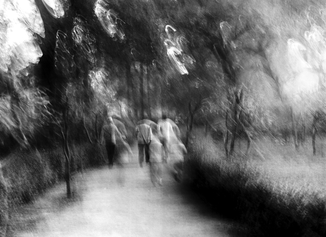 Morning Walk Friends, New Delhi 2013   Edition 2 of 2