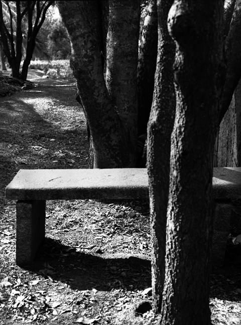 Stone Bench, Bangalore 2011   Edition 1 of 2