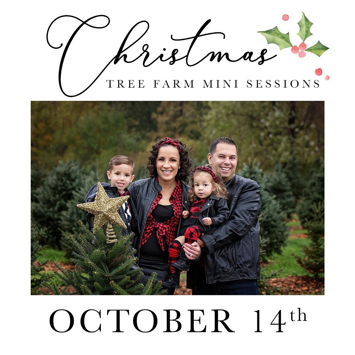 Christmas Tree Farm Mini Sessions.2019 Christmas Tree Farm Mini Session Sign Ups Kristin