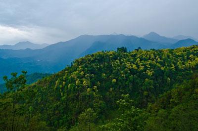 Saving Sikkim's Shangri La
