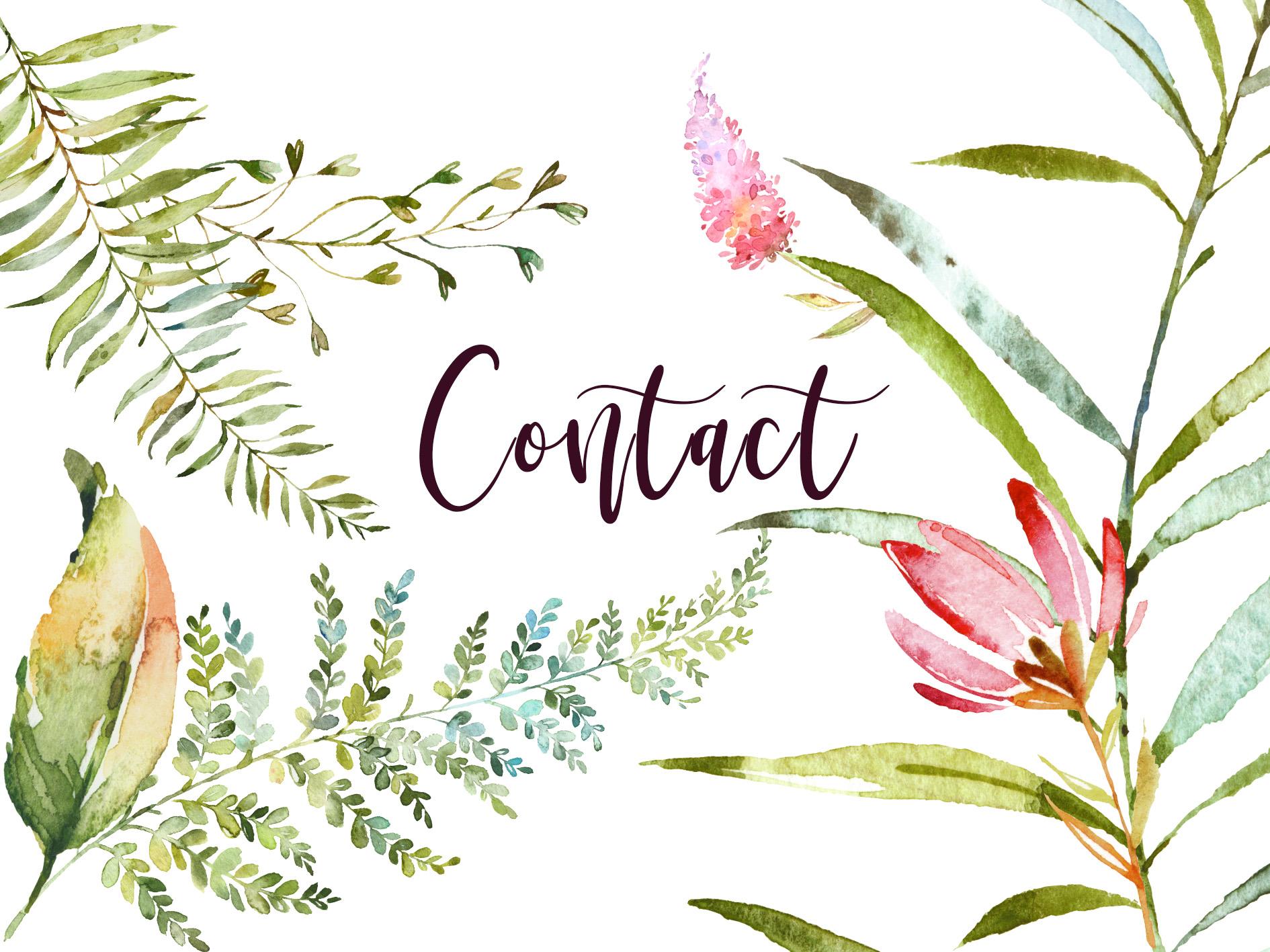 Contact Nicole