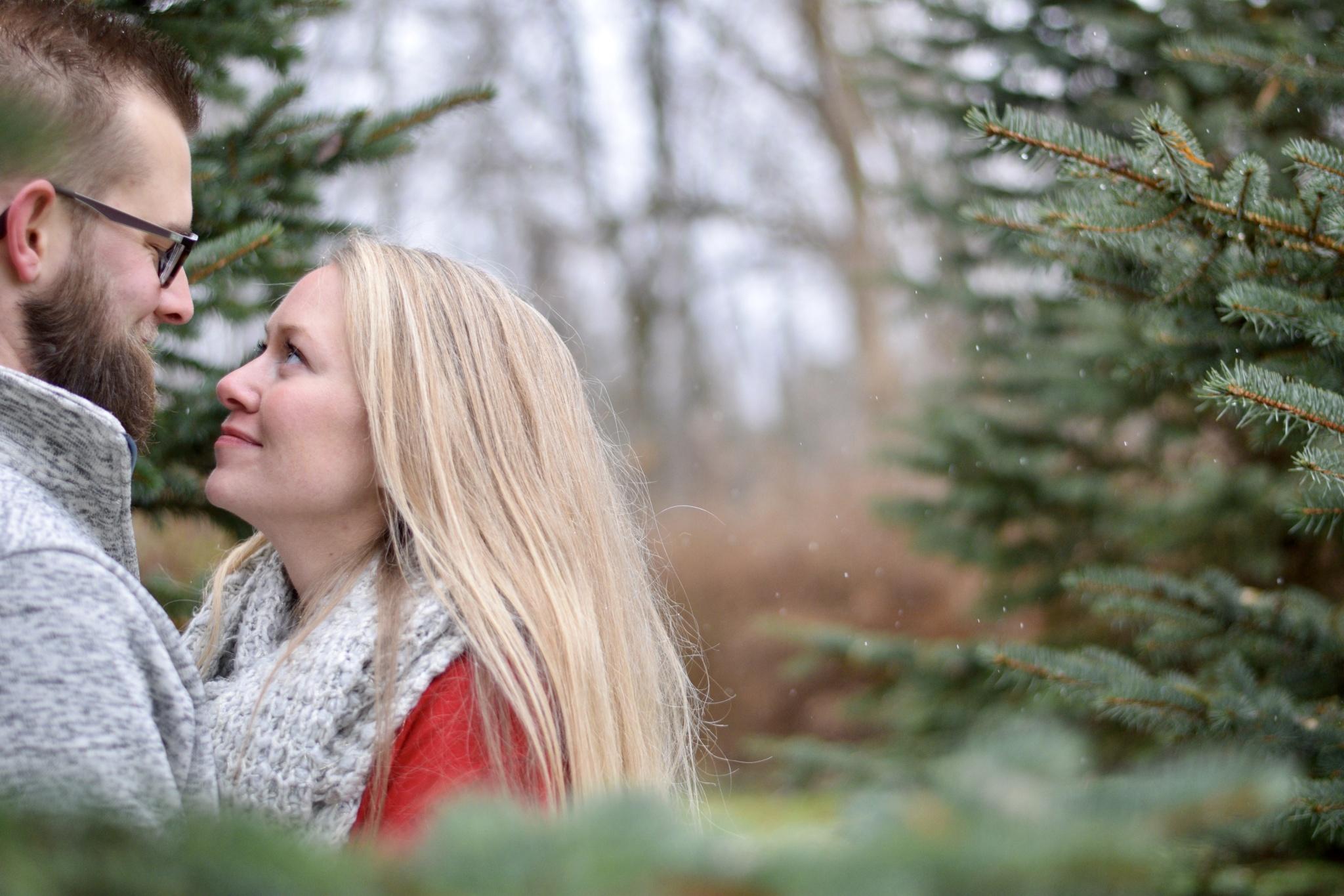 November 26th Holiday Photo Shoots!
