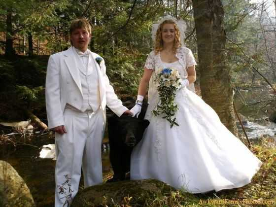 The Pet Bear in Wedding Photography