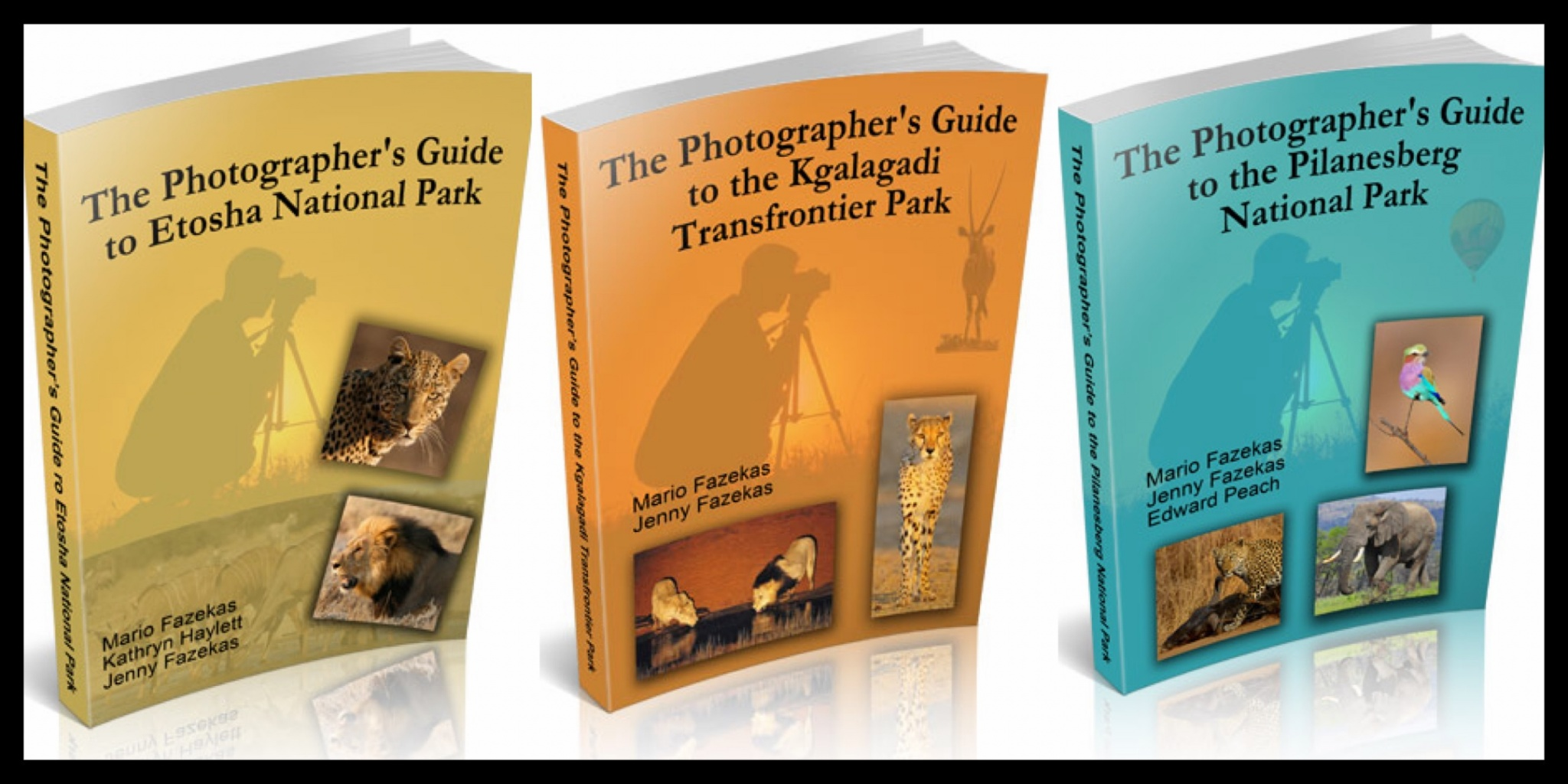 Libros recomendados     Recommended books