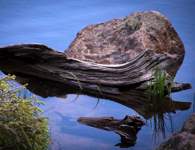 Water Scenic at Bear Lake