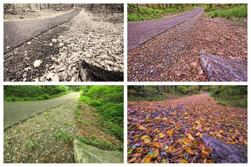 Four Season Northwest Lancaster County River Trail Collage