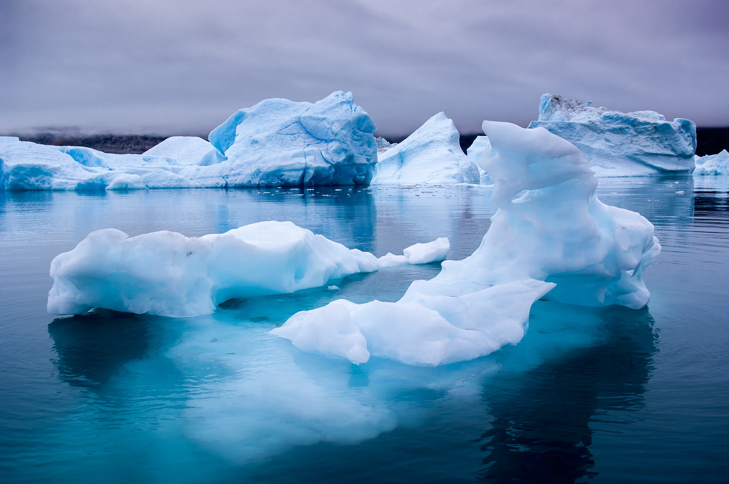 Blue Icebergs in Greenland