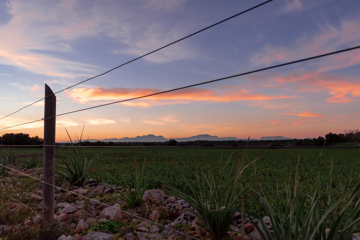 Twilight at Finca Son Real. Santa Margalida. Mallorca. Balearic Islands
