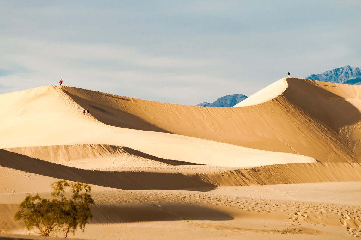Sandboard in Death Valley National Park. California. United States of America