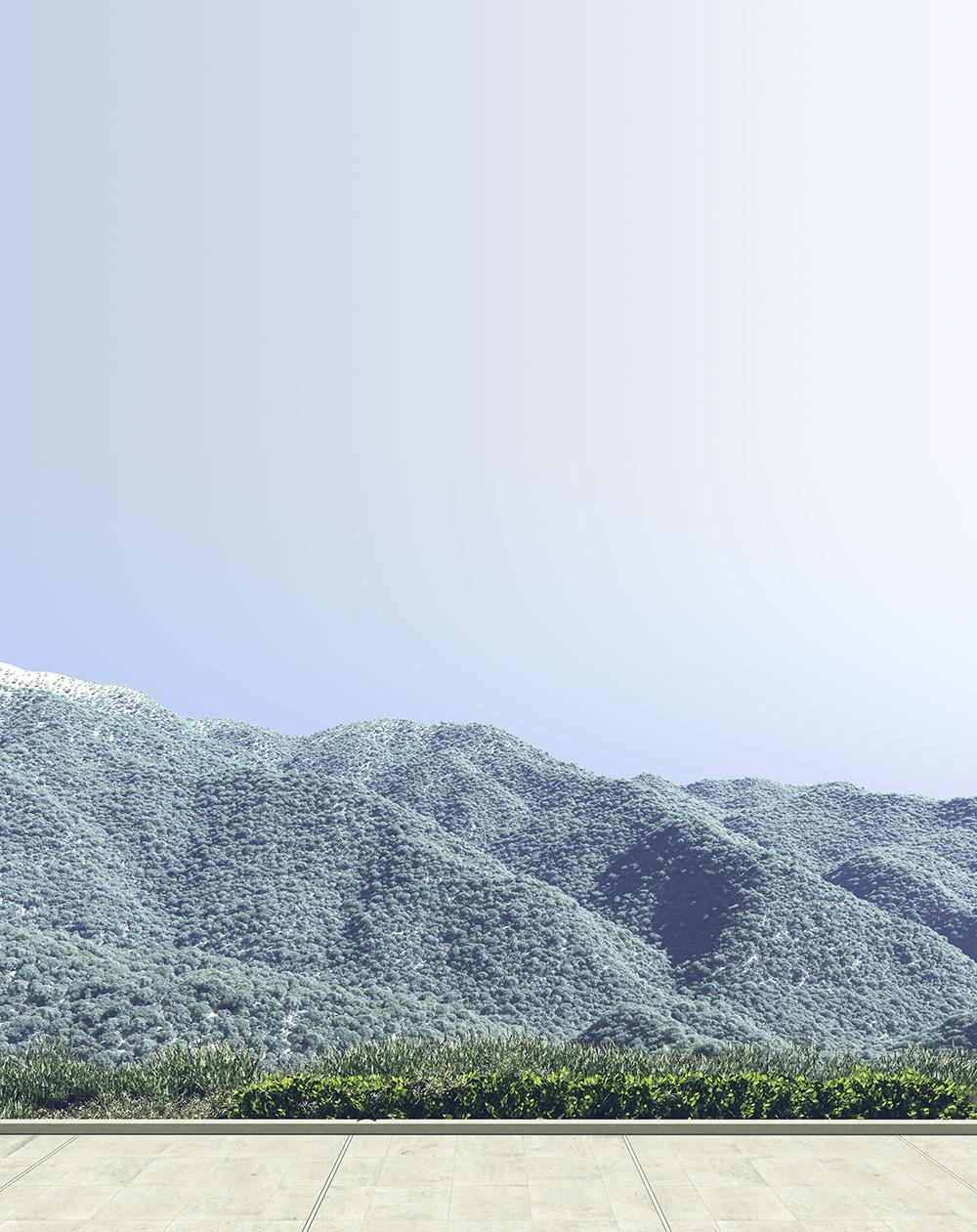 Artificial Vue | Burbank Estate