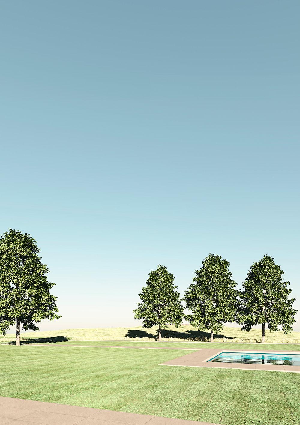 Artificial Vue | Carmel Estate