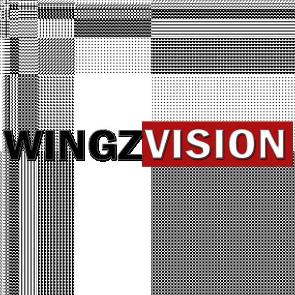 WingzVision