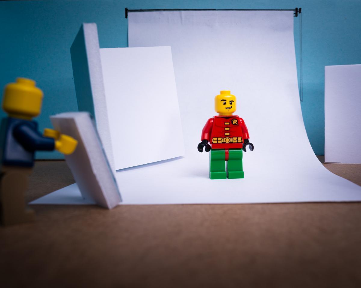 Robin studio shoot