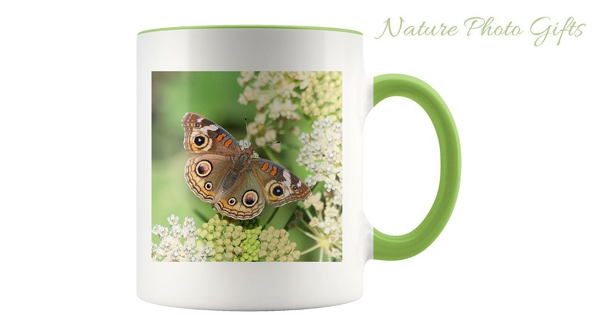 Nature Photo Gifts