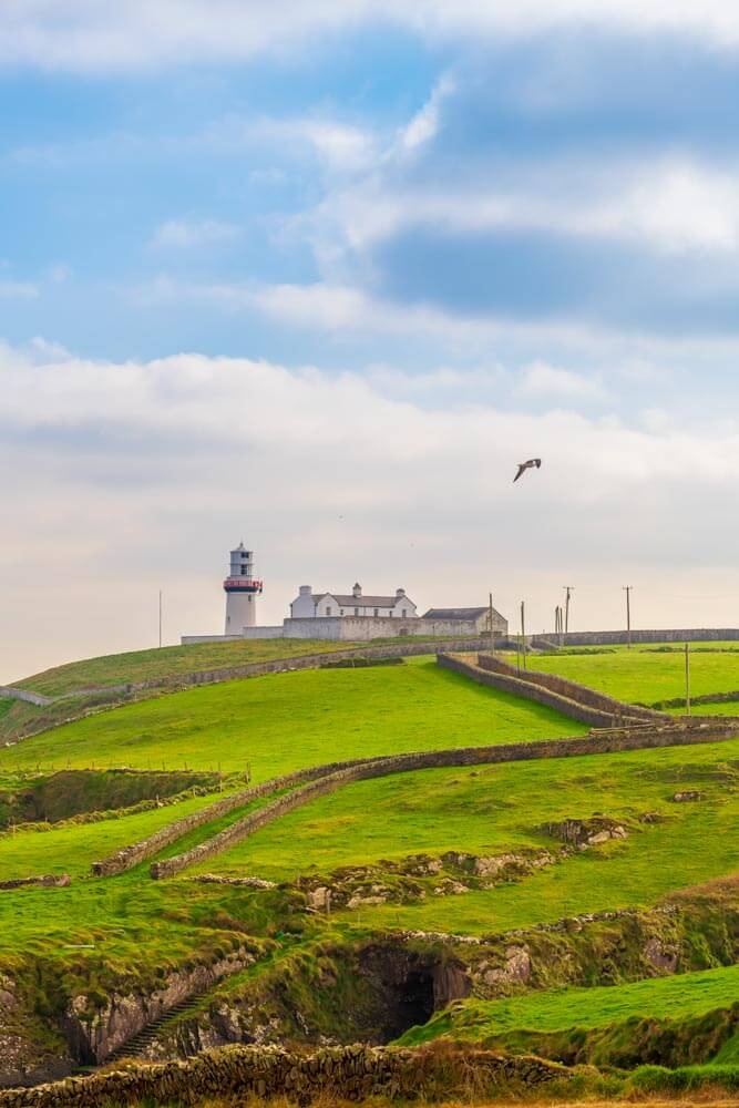 A close up photograph of Galley Head Lighthouse, West Cork, Ireland as a seagull soars past