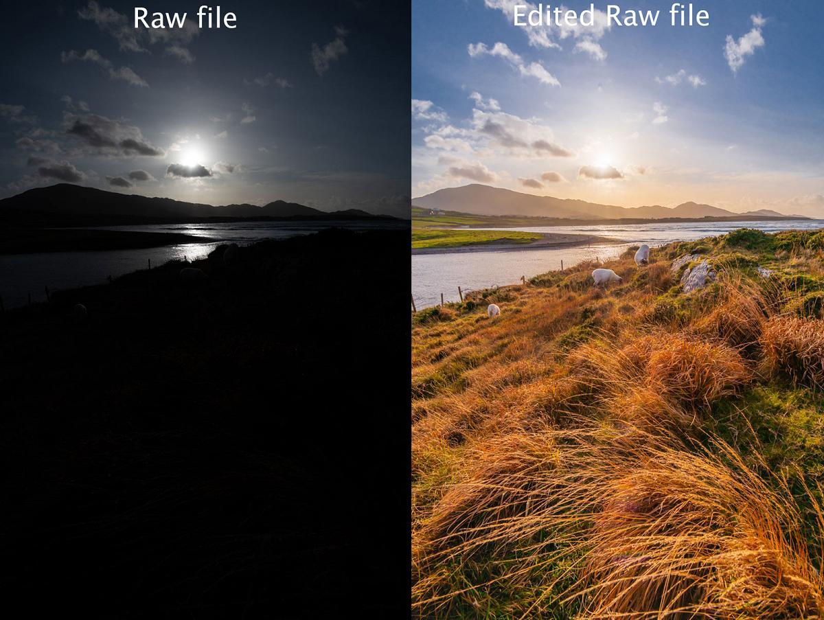 Jpeg vs raw photograph
