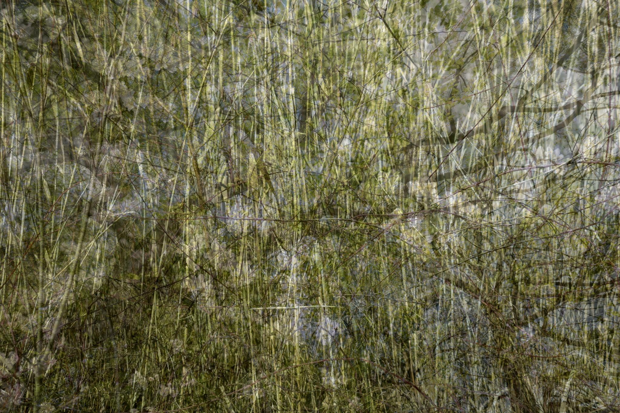 Thomas Teske photography - see the world through my eyes