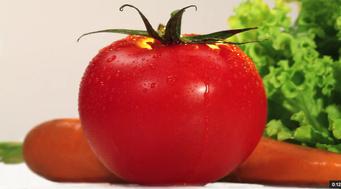 Tomates, salades, carottes primeurs - Campagne TV INTERFEL Eté 2014