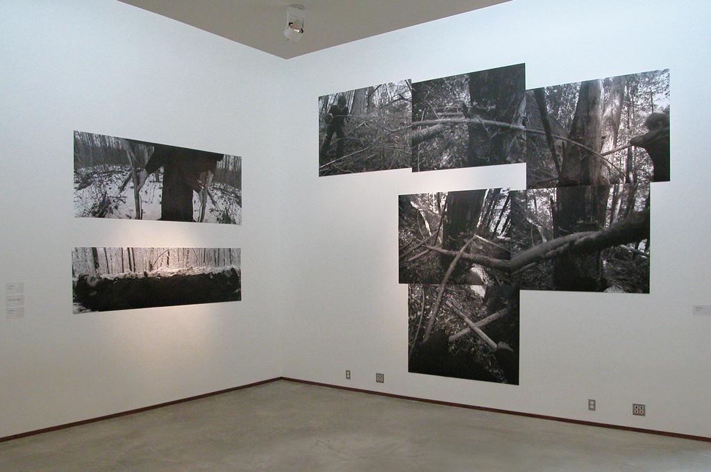 Cranbrook Art Museum, Bloomfield Hills, MI 2003.