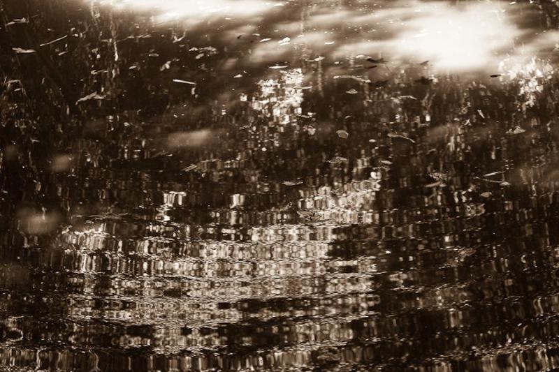 water reflections, masai mara, kenya, 2009