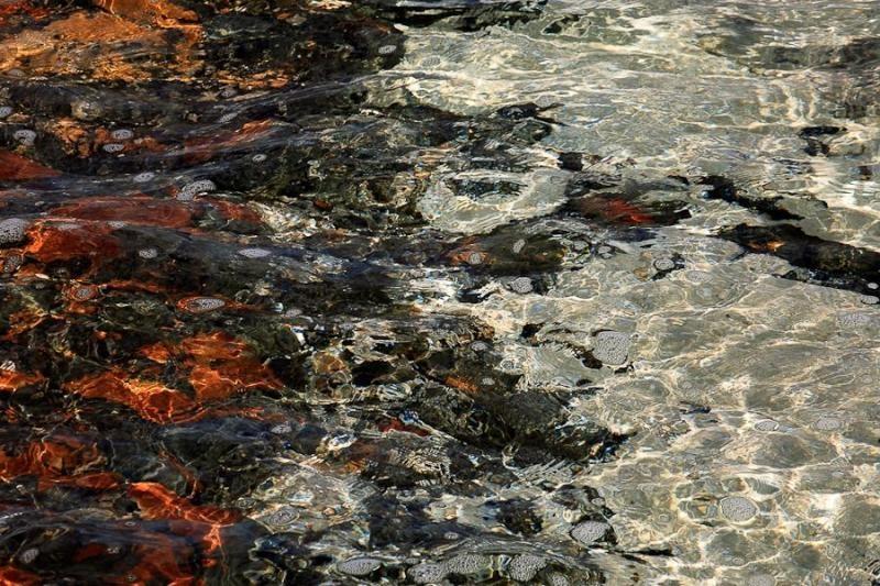 stromatolites, hamelin pool, australia, 2008