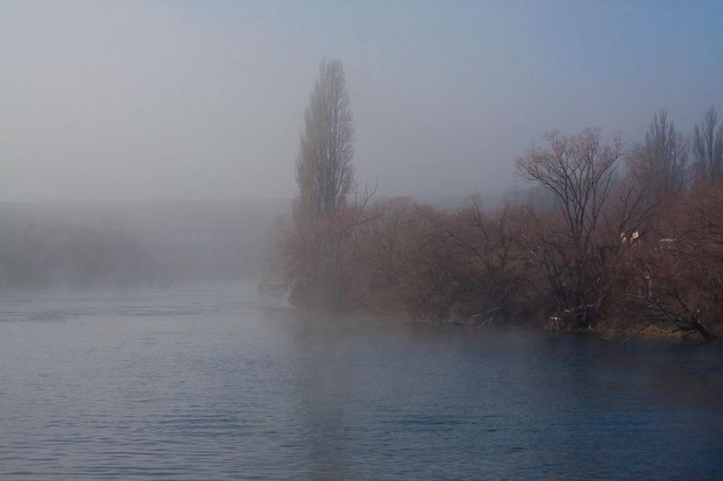 misty landscape, invercargil, new zealand, 2010