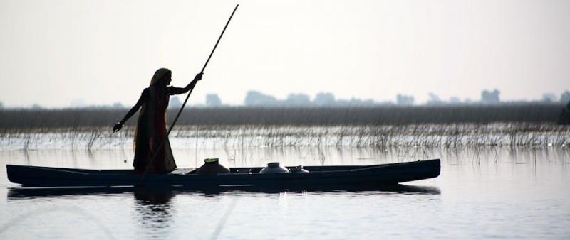 fisherwoman, nalsarovar, 2007