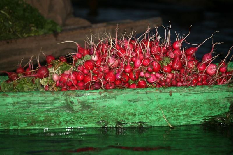 floating market, srinagar, 2008