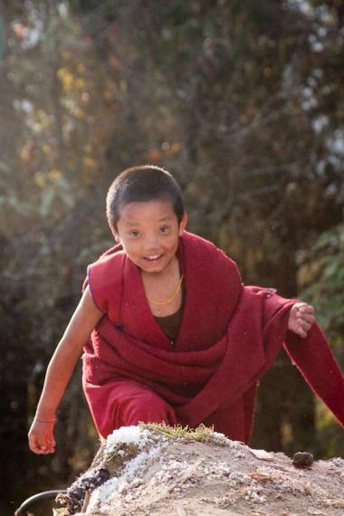 child monk, tawang monastery, arunachal, 2010