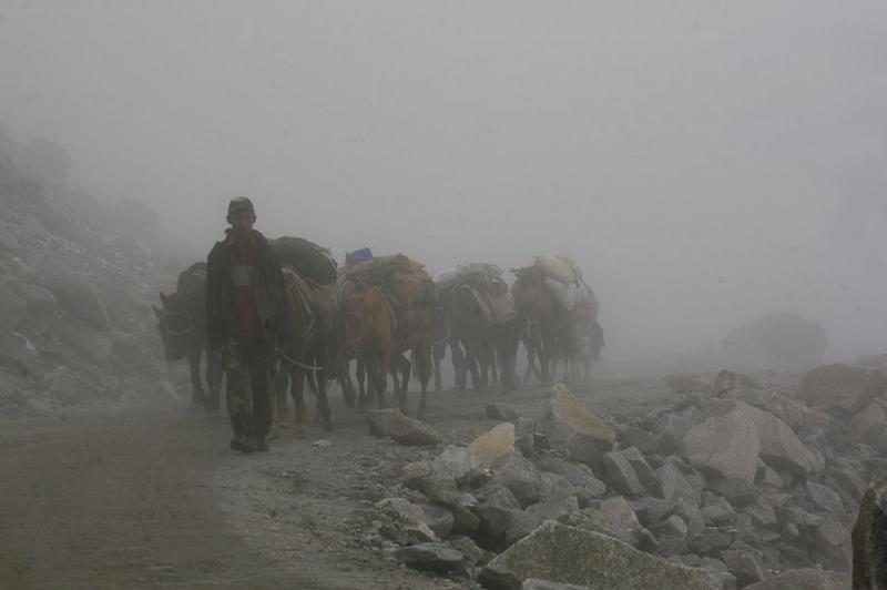 porter at khardung la, ladakh, 2007