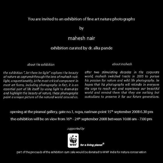 solo exhibition at ncpa, mumbai, 2008