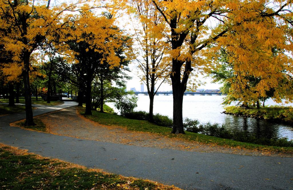 Esplanade Autumn