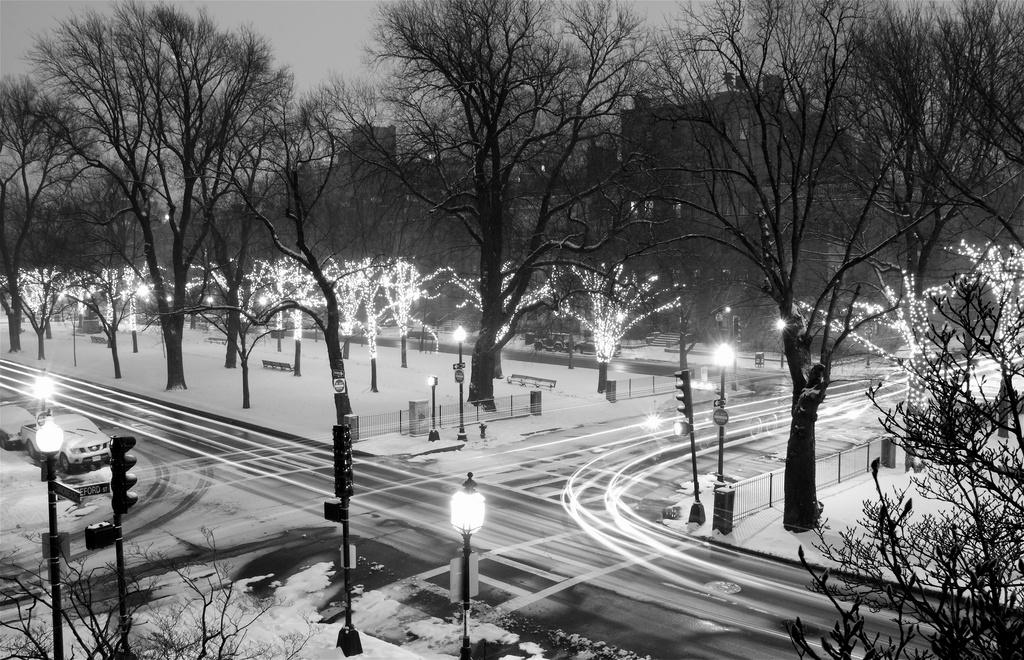 Saturday Night Snow