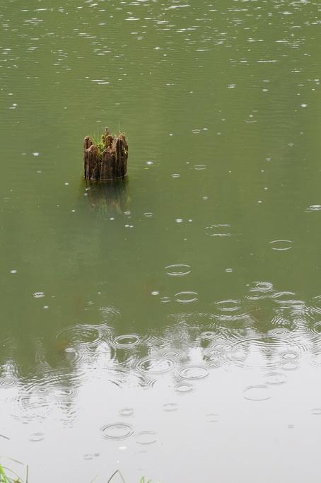 Lacul Rosu 0005