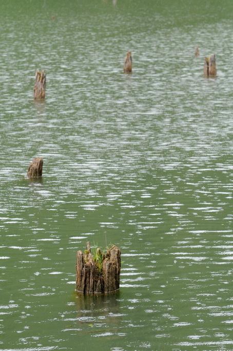 Lacul Rosu 0007