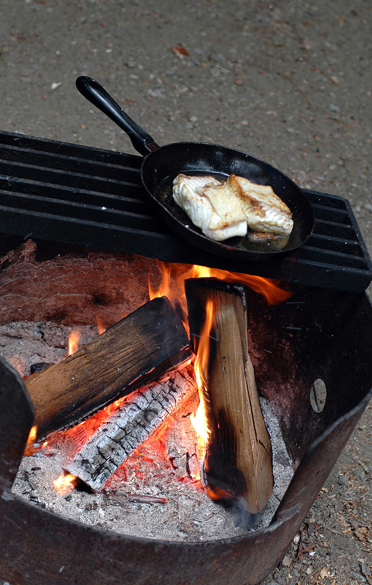 Searing Halibut over a campfire.