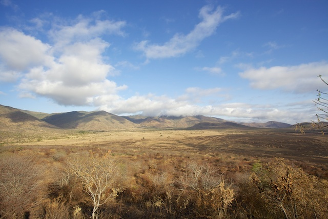 Mkomazi National Park with Pare Mountains, Tanzania