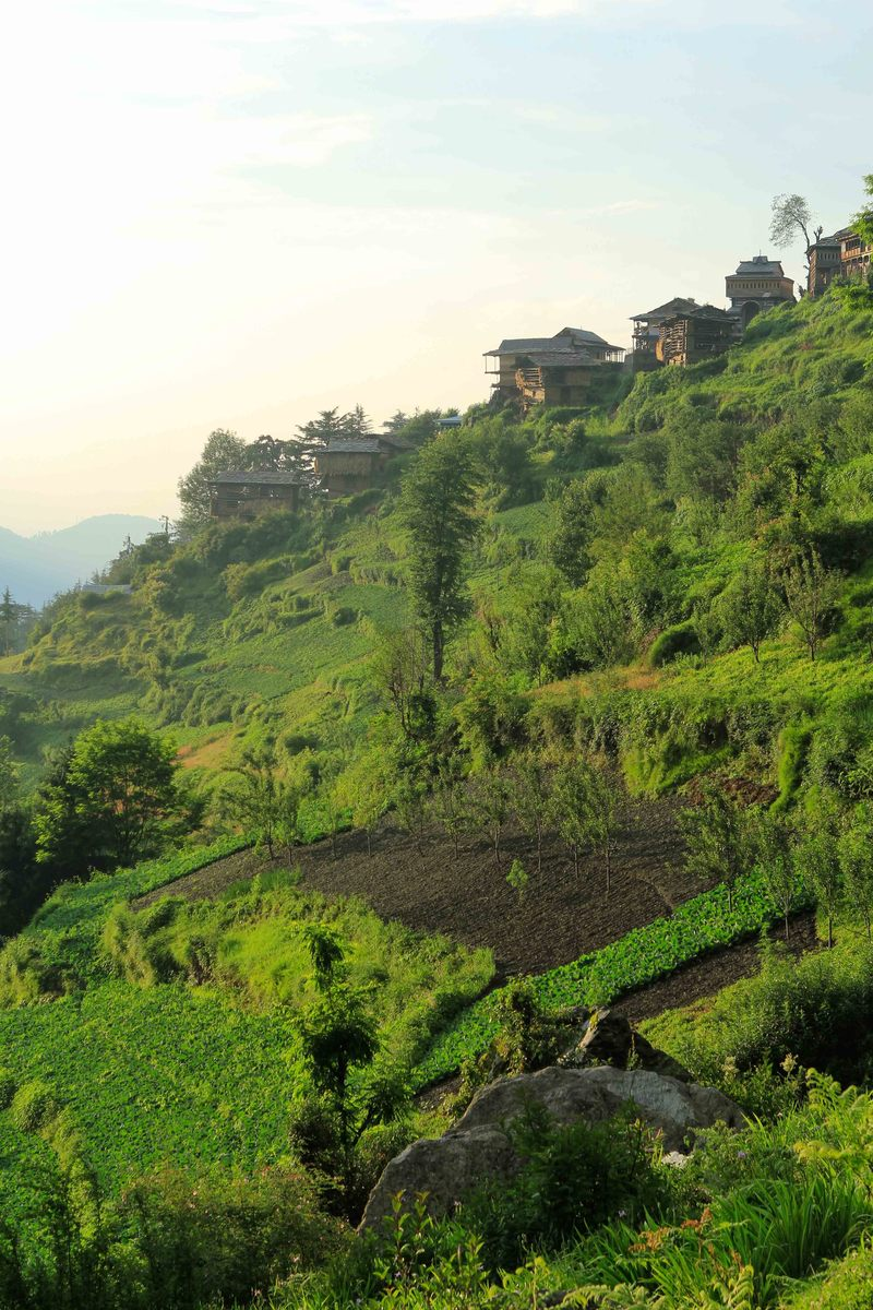 Saujha Village, Jalori pass, Himachal Pradesh