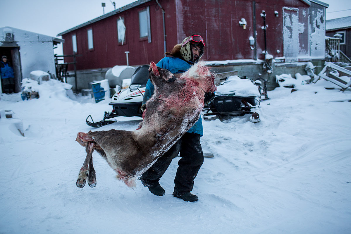 Fred Weyiouanna, 32 years old and a lifelong resident, carries a caribou carcass to the walk-in-freezer to store the meat for the upcoming season. Shishmaref is a barrier island with a population of less than 600 Alaska native Inupiaq people located 30 miles south of the Arctic Circle. The island is threatened by global temperature rises which have disproportionately affected the Arctic. Rising water levels and increased erosion mean that Shishmaref is slowly being absorbed by the surrounding seas and the prognosis is that it will disappear completely over the next two decades.