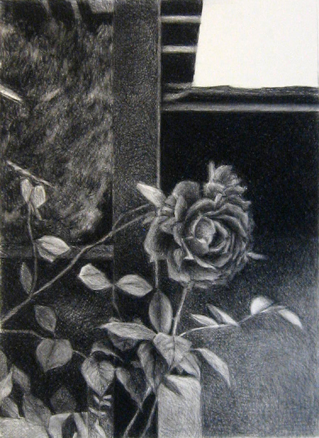 Roses, in artists collection.