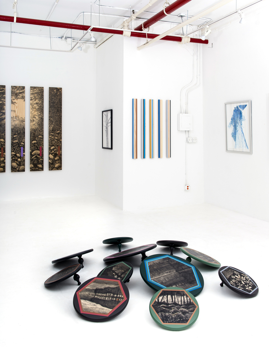 DromomaniaX2, Stacey Cushner & Liselott Johnsson, Exhibition Photos