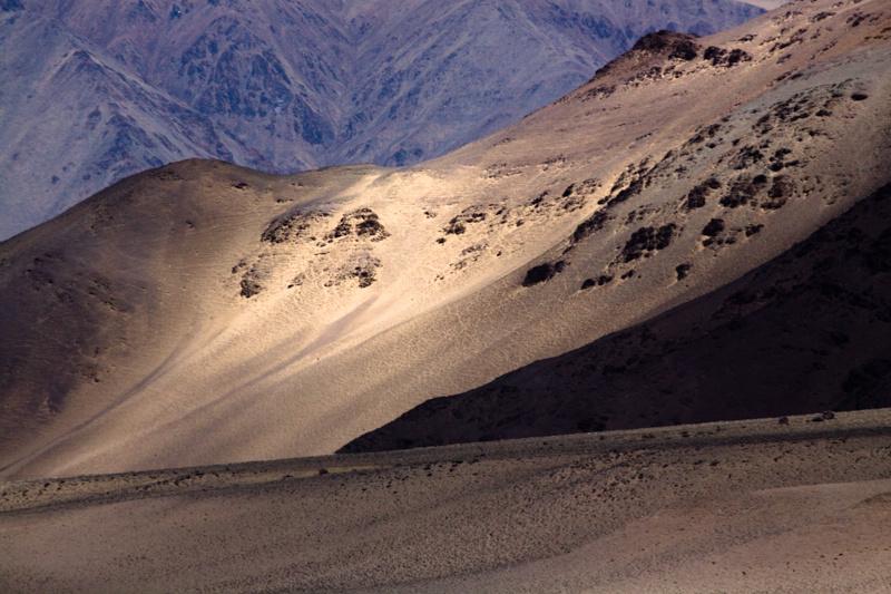 colourful ladakh 2011