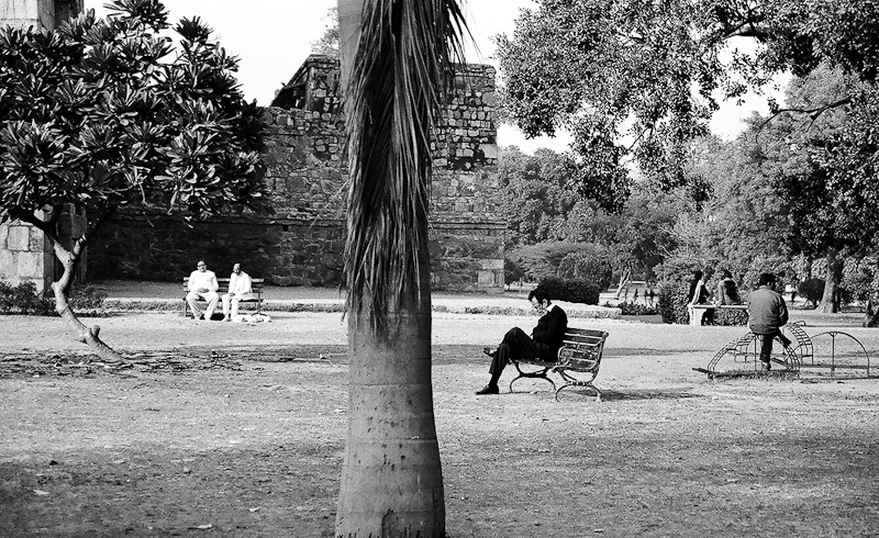 A Lazy Afternoon, New Delhi 2011   Edition 1 of 2