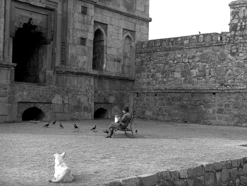Feeding Crows, New Delhi 2012   Edition 1 of 2