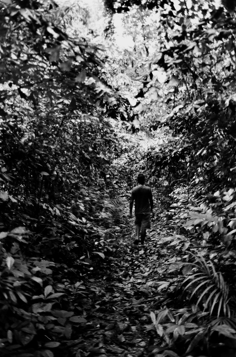 Walk in the Woods, Andaman Islands 2010   Edition 1 of 5
