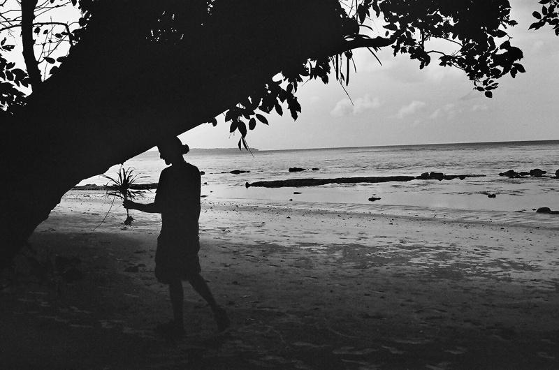 Transplanting, Andaman Islands 2010   Edition 1 of 2