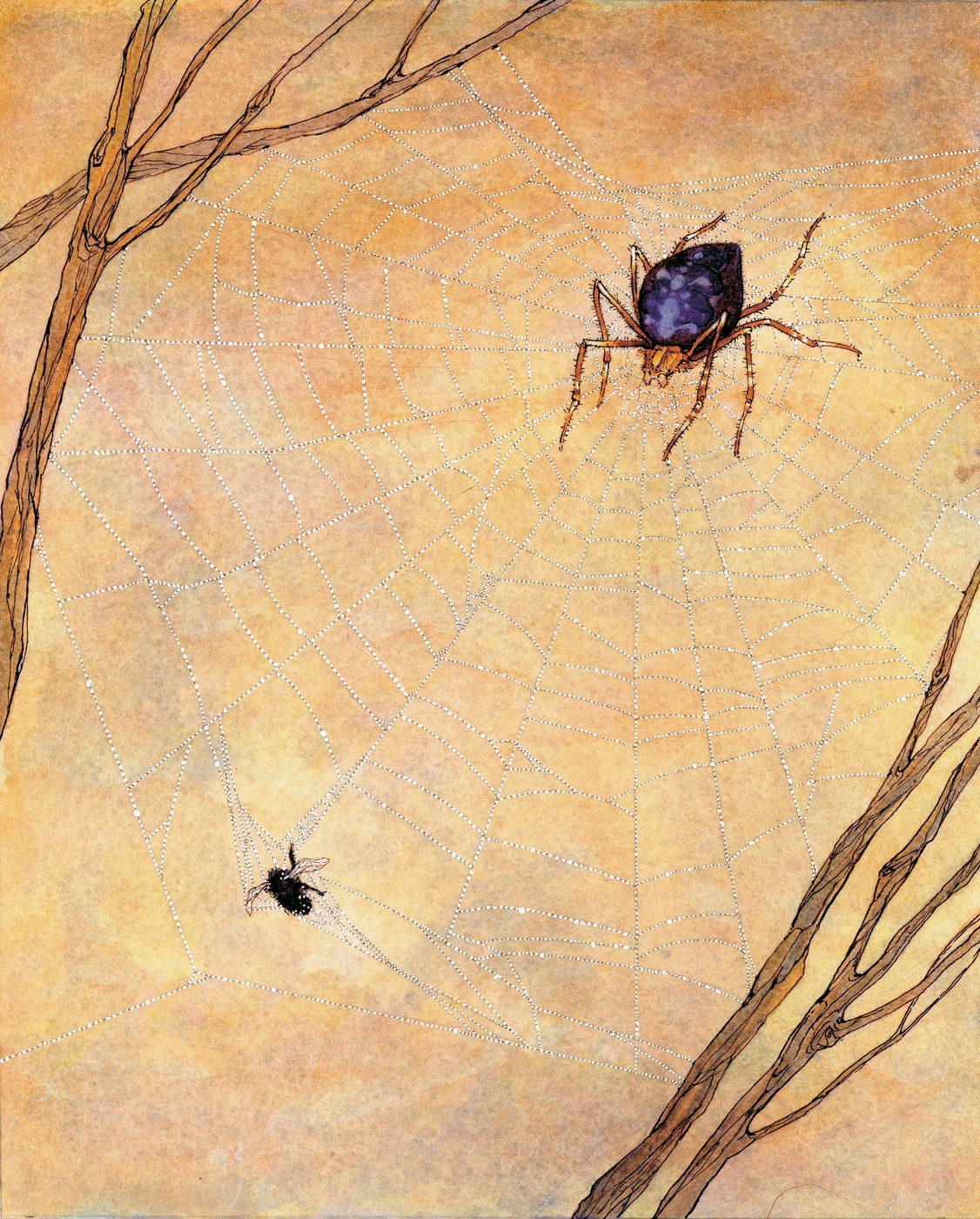 "Illustration for ""DO SPIDERS STICK TO THEIR OWN WEBS?"""
