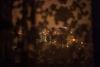 La vu de l'appartement de Nadejda, 57, la patiente régulière de l'ancien hôpital numéro 11, a cote de la station de metro Yasenevo, a Moscou, le 17 décembre, 2014. Il lui faut une heure pour aller à l'ancien hôpital numéro 11, le centre de sclérose en plaque. Selon la nouvelle loi russe les ambulances ne véhiculent pas les malades atteints de maladie chronique.